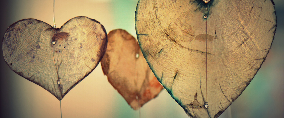 heart-wood1200x500
