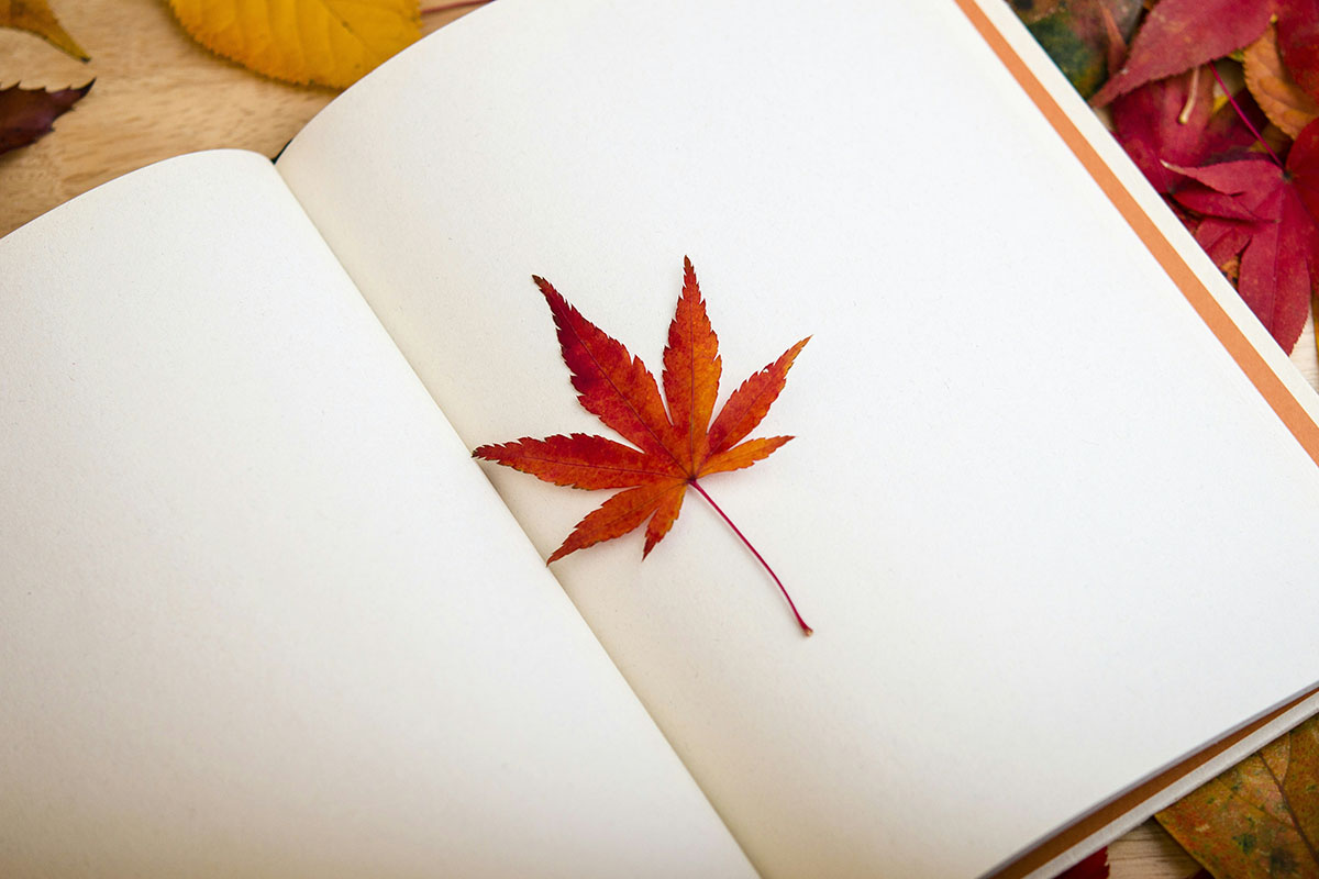 book-autumn-leaf-1200x800px