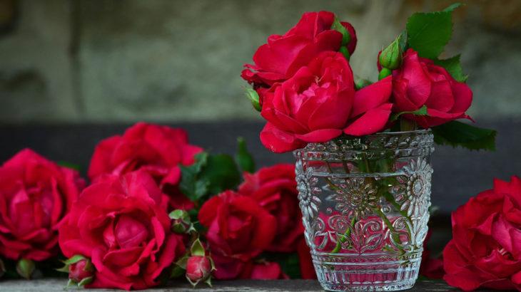 roses-glass-vase-1200x800px