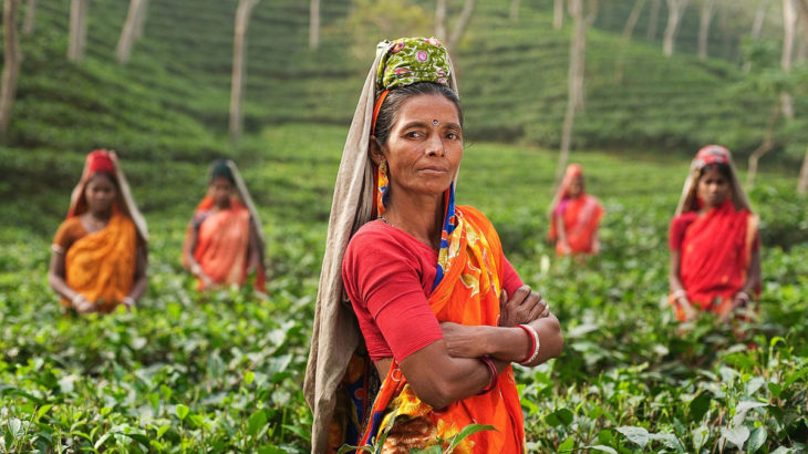 women-tea-plantation