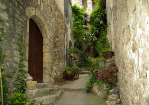 medieval-street-stone-buildings-plants
